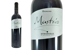 DOMAINE MASTRIO DYNAMIQUE